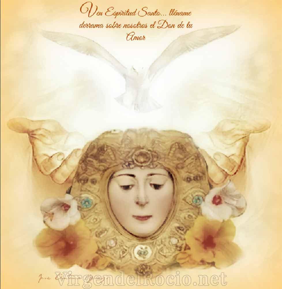 Cara Virgen del Rocío